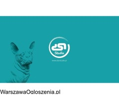 DSN STUDIO GRAFICZNE logo, www, ulotki, foldery TANIO i SZYBKO + DRUK