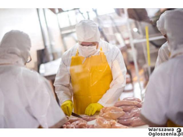 praca przy pakowaniu mięsa - 1