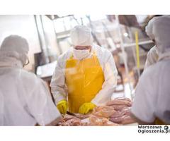 praca przy pakowaniu mięsa