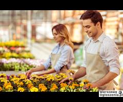 Praca przy kwiatach i stroikach kwiatowych Holandia