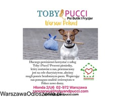 Toby&Pucci Psi Butik i Fryzjer